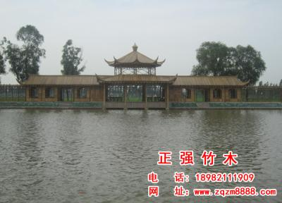 竹长廊  3