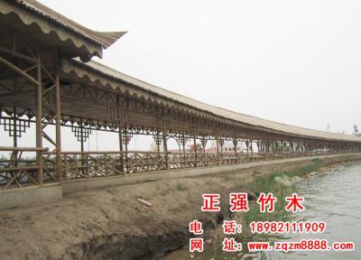 竹长廊 4