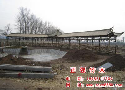 竹长廊 5