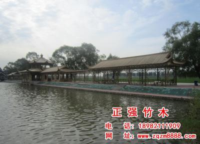 竹长廊 6