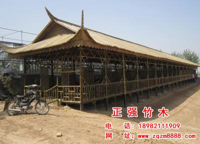 竹长廊 9