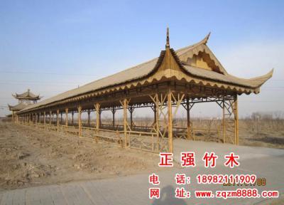 竹长廊 10
