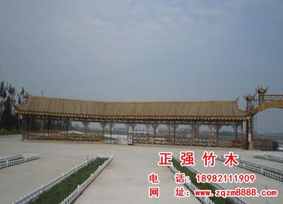 竹长廊 11