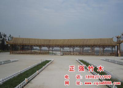 竹长廊 12