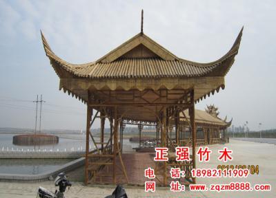 竹长廊 14