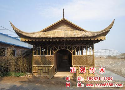竹长廊 16